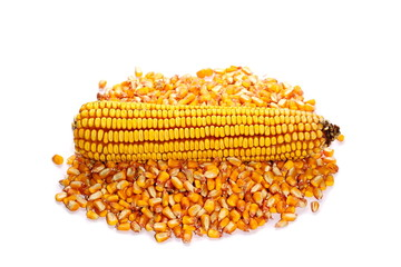 pile corn seed and maize isolated on white background