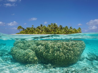 Tropical island above and underwater with coral below sea surface, atoll of Tikehau, Tuamotu archipelago, French Polynesia, Pacific ocean