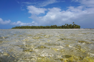 Tropical islet of the atoll of Tikehau, seen from a shallow channel (hoa) between the ocean and the lagoon, Tuamotu archipelago, French Polynesia, Pacific ocean