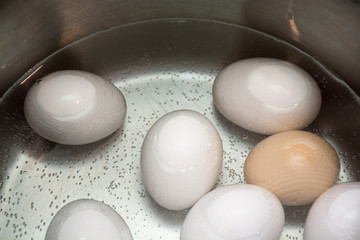 boiled eggs in a pan