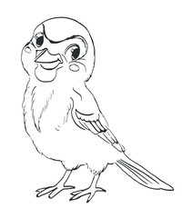 Bird sparrow. Vector sketch characters for coloring