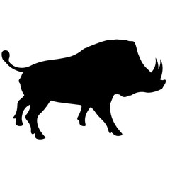 a wild boar. Black vector silhouette of a pig