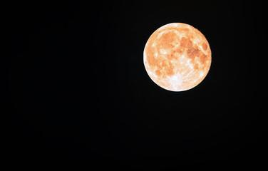 Full Moon In a Black Sky