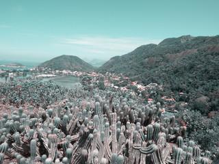 Paisagem vista do Parque da Cidade - Niterói - RJ.