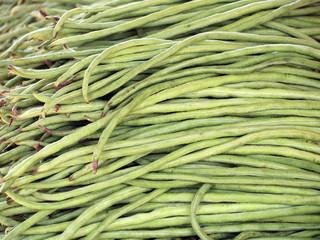 Yardlong bean texture