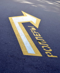 Road marking  in St-Petersburg, Russia. Translation: Roller skaters