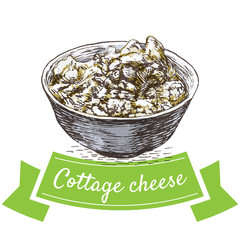 Cottage cheese colorful illustration.