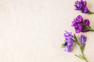 Purple flowers on linen toning copy space background