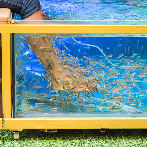 Fish spa pedicure stock photo and royalty free images on for Fish pedicure price