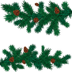 some green spruce branches with cones