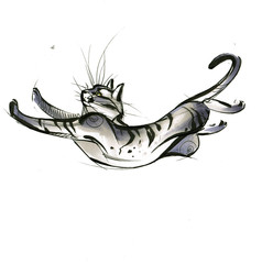 sketch of a cat jumping