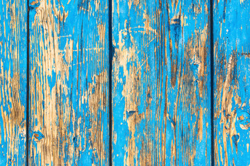 Rustic weathered planks with blue paint peeling off Wall mural
