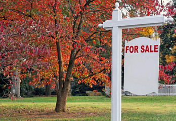 A blank For Sale sign in front of a house.