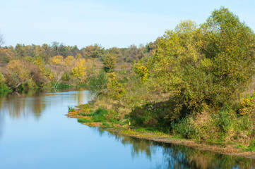 Fall River, trees dressed in yellow leaves leaned over the water
