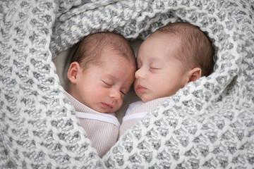 Twins, f+m, 4 Weeks