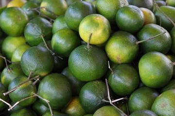 Frisch geerntete Mandarinen, Philippinen