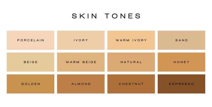 Skin tones color palette vector