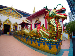 Gold Thai dragon Chinese dragon at public temple that created with money donated by people to hire artist no restrict in copy or use