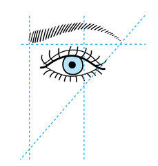 How to make brow. Brow shape. Vector
