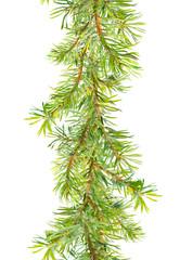 Christmas tree border - fir  branches. Watercolor frame strip