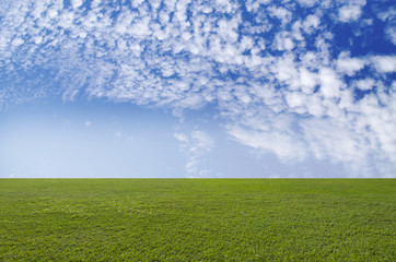 Green field and blue sky. Beauty nature background