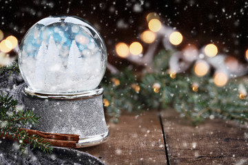 Silver Snow Globe with White Christmas Trees