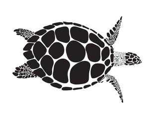 turtle vector symbol