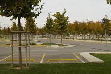 Car parking in ther park with yellow lines