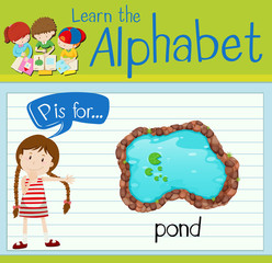 Flashcard alphabet P is for pond