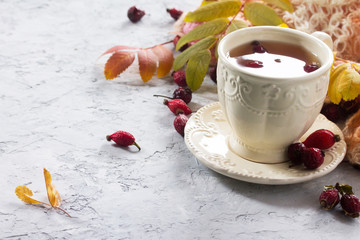 Tea from rose hips, autumn leaves and a warm scarf on a concrete