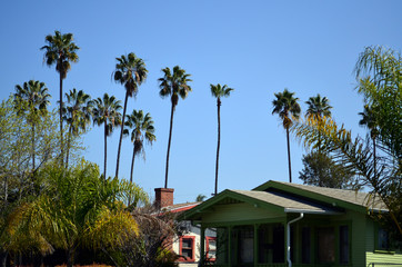Typical Southern California bungalow with palm trees