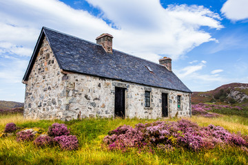 Idyllic farmland and livestock in the stunning wilderness of Assynt in the Scottish Highlands.