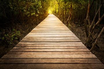 Keuken foto achterwand Weg in bos Wooden walkway in mangrove park