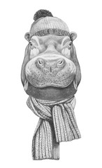 Portrait of Hippo with hat and scarf. Hand drawn illustration.