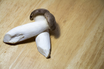 Fresh mushrooms for cooking