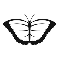 Butterfly with big wings icon. Simple illustration of butterfly with big wings vector icon for web