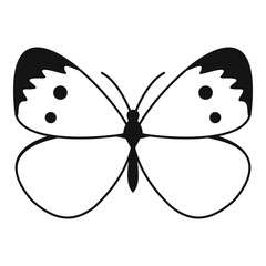 Butterfly with pattern on wings icon. Simple illustration of butterfly with pattern on wings vector icon for web