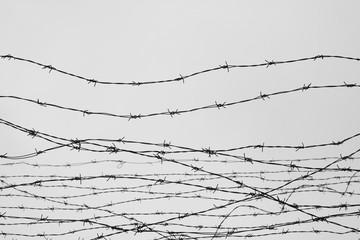 Fencing. Fence with barbed wire. Let. Jail. Thorns. Block. A prisoner. Holocaust. Concentration camp. Prisoners. Depressive background.