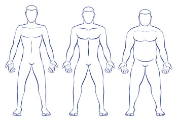 Body types - ectomorph, mesomorph and endomorph.