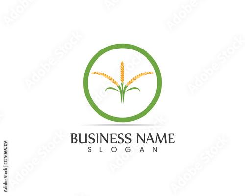 """""""Rice Plant Logo"""" Imagens e vetores de stock Royalty Free ..."""
