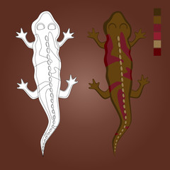Stock Vector Coloring lizard. Salamander painted for example, and not painted.