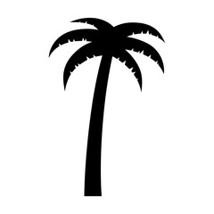 Palm tree or coconut tree flat icon for vacation apps and websites