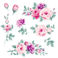 Set of pink decorative roses. Vector flowers and buds