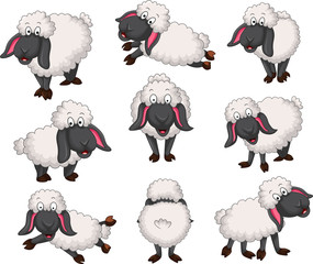 Nice set of vector cartoon sheep for your desig