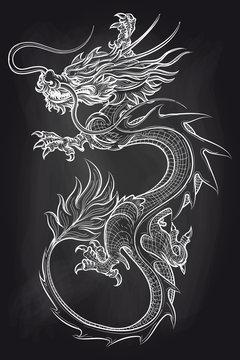 Chinese dragon on chalkboard backdrop. Hand drawn dragon vector illustration