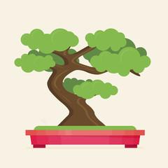 Vector illustration of bonsai tree