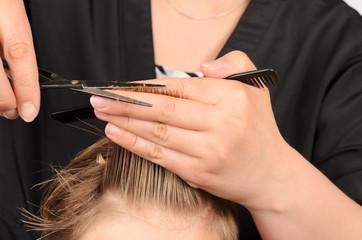 Friseuer, Haare schneiden