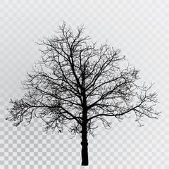 tree 6587