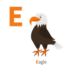 Letter E. Eagle. Big beak. Beautiful Exotic bird icon. Baby animal collection. Zoo alphabet. English abc. Cute cartoon funny character. Flat design. White background. Isolated.
