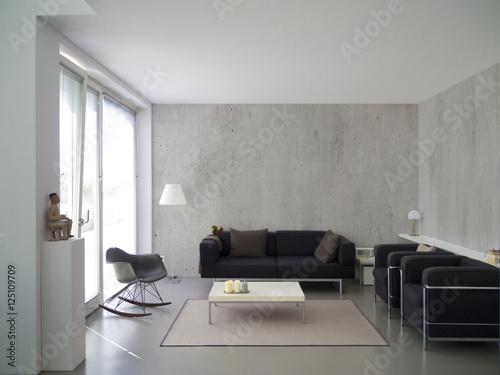 Modernes Zeitgenössisches Wohnzimmer Mit Betonwand Und Platz Für Bilder